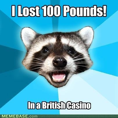 memes local racoon loses pounds find out