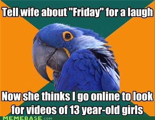 memes paranoid parrot suspicious browsing history