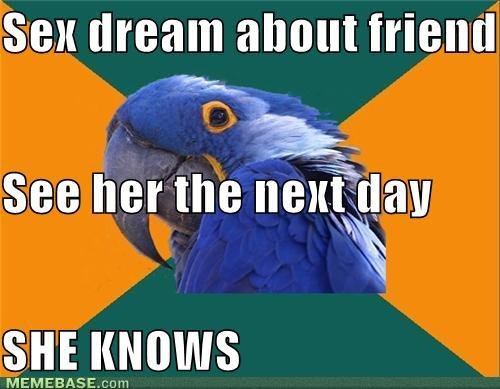 memes sex dream friend see her next day she knows