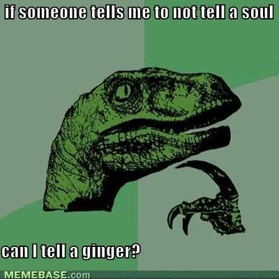 memes someone tells not tell soul can tell ginger
