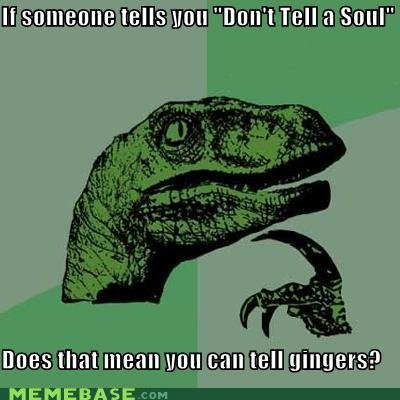 memes someone tells dont tell soul does mean can tell gingers
