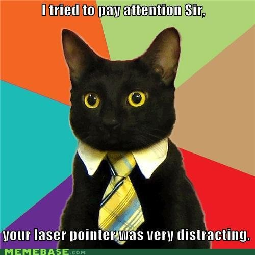 memes tried pay attention sir your laser pointer distracting