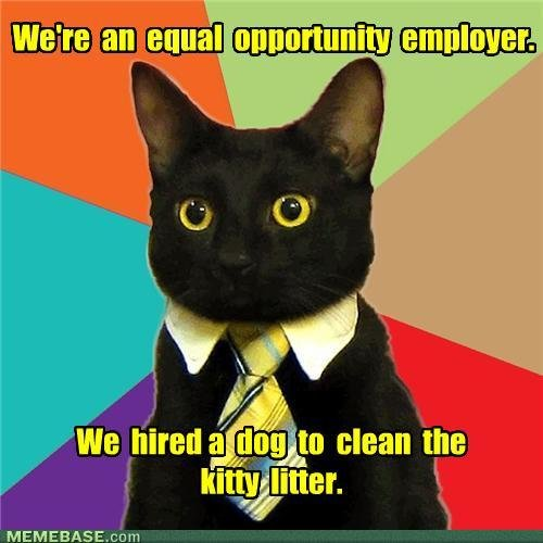 memes equal opportunity employer