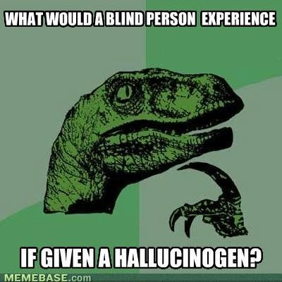 memes what would blind person experience