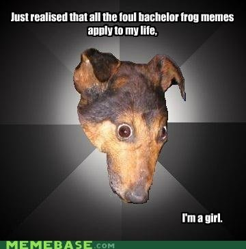 memes wonder guy friends think awesome