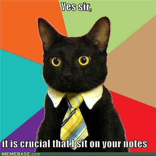 memes yes sir crucial sit your notes