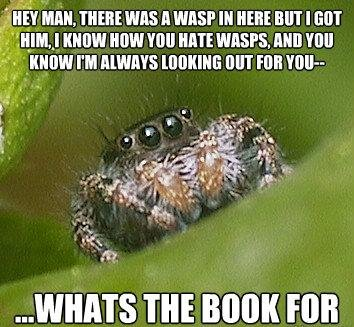 misunderstood spider meme book
