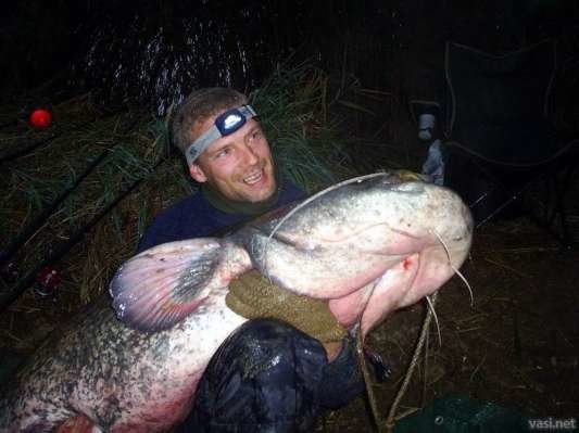 mw533mh0w0h0000 - what you can catch with a rod