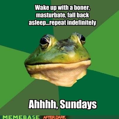 naughty memes foul bachelor frog also known sunday loop