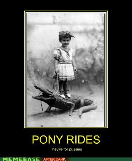 naughty memes gator rides are where
