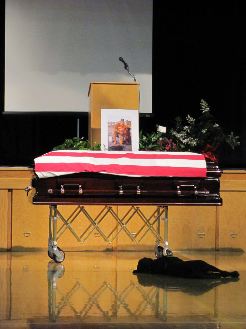 navy seal funeral dog
