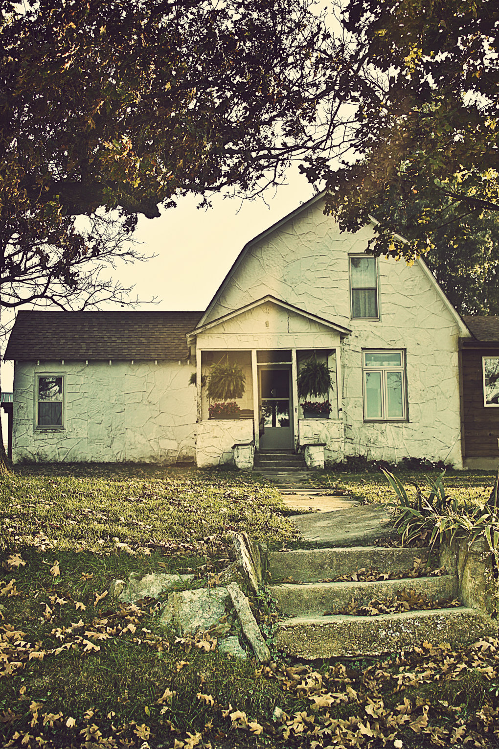 old house - my photography!  part 2