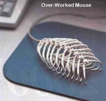 worked mouse