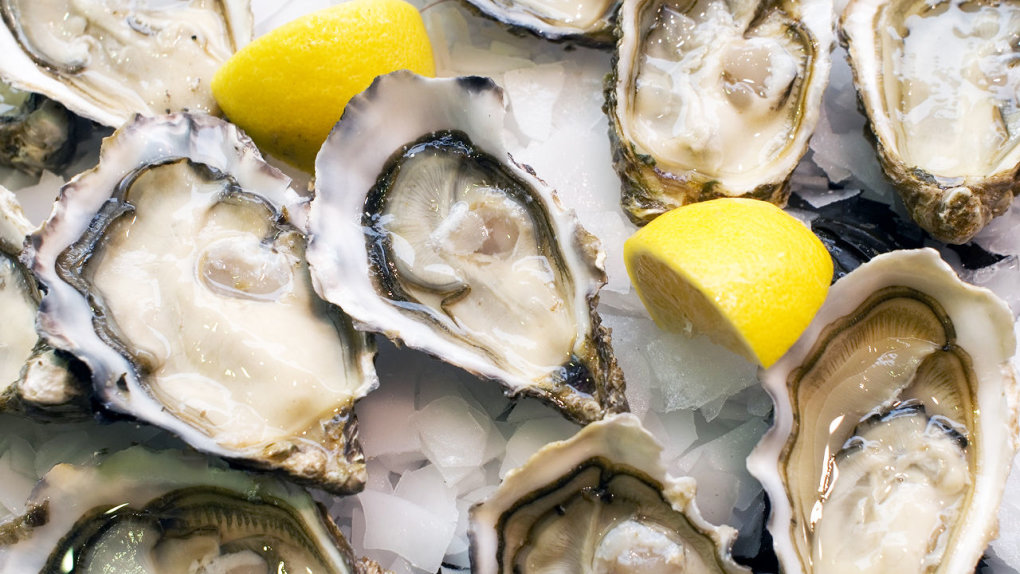 oysters - 15 expired foods that are dangerous and most probably in your fridge