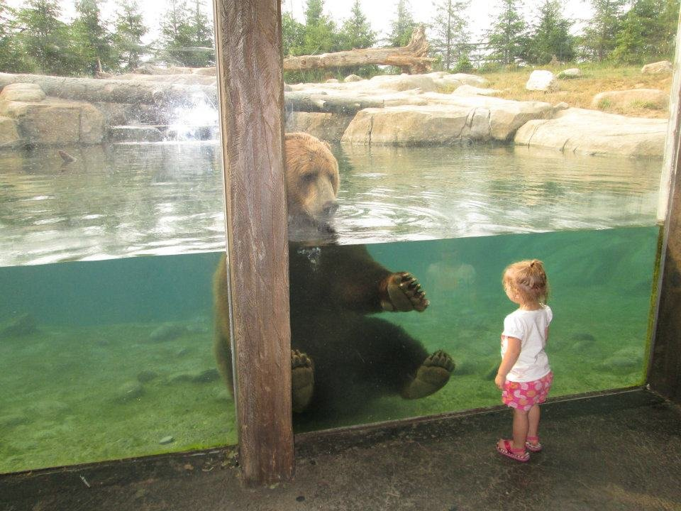photo good friends took zoo priceless moment