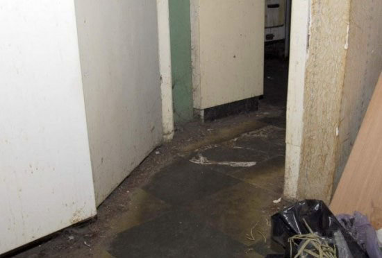 pigsty1 - here are some serious hygiene and lifestyle issues...
