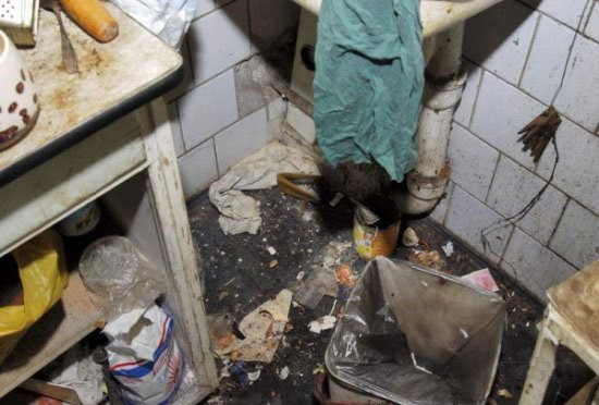 pigsty11 - here are some serious hygiene and lifestyle issues...