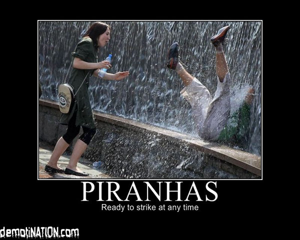 piranhas - yet another motivational poster post