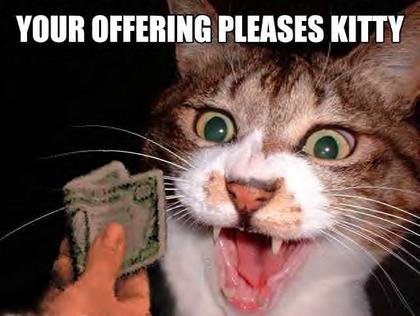 pleases me - funneh cat pics