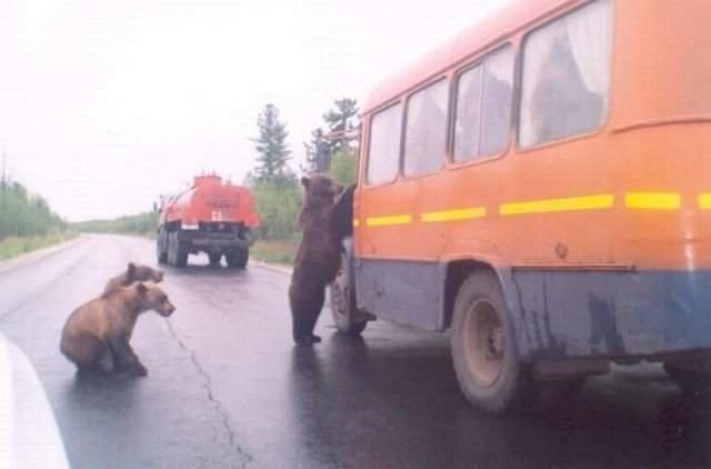 police checkpoint russia