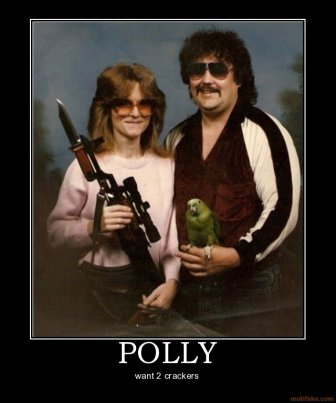 polly - put title here