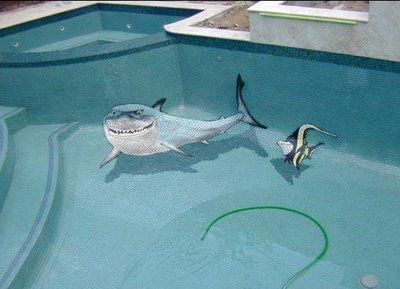 pool illusion