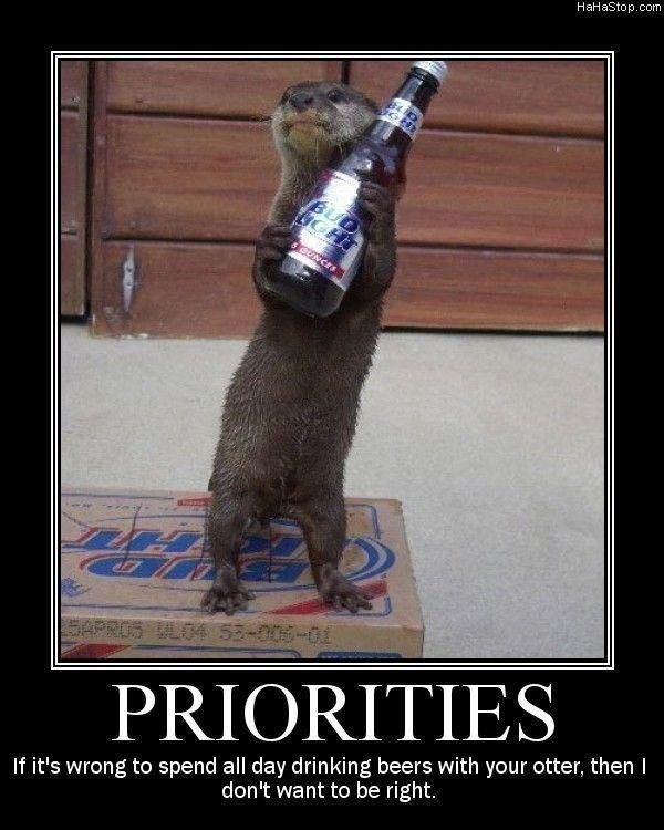 priorities178 - otters are awesome