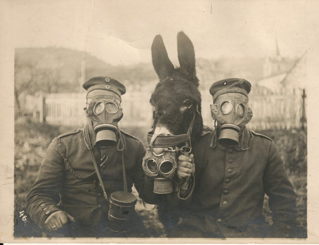 rare historical images from past