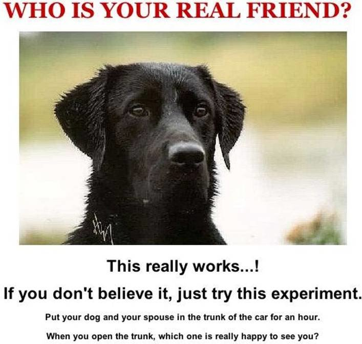 real friend experiment
