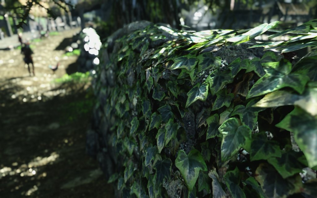 realistic ivy leaves