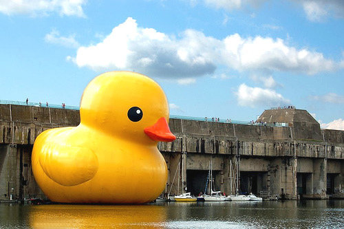 rubberducky new - these are not photoshoped