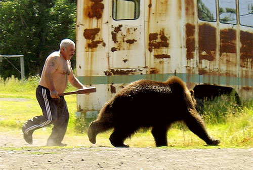 russianbear - the 8 manliest images on the internet