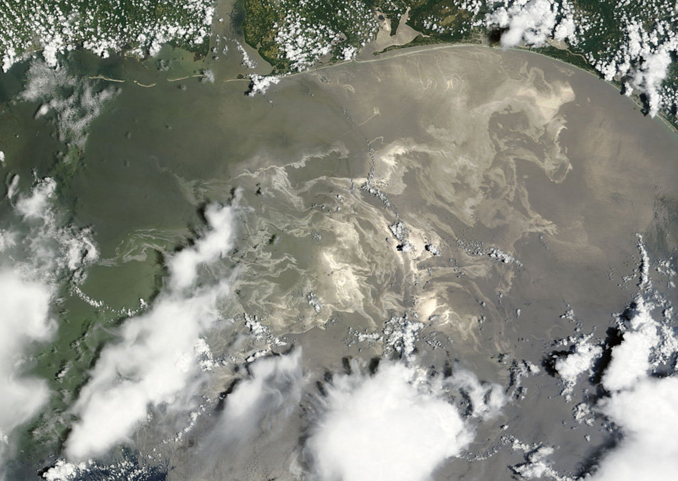s16 23979435 - oil in the gulf, two months later