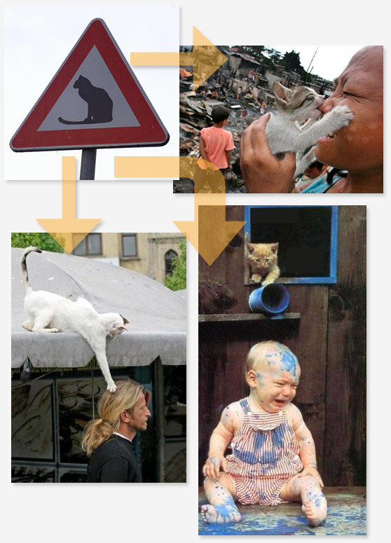 signs3 - this is why you have to pay attention to warning signs