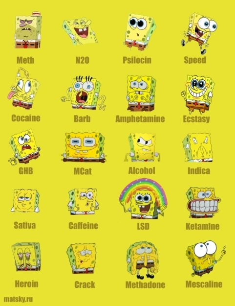 spongebob drugs small