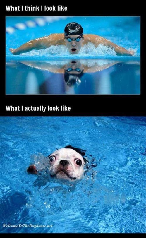 swimming - expectations vs reality