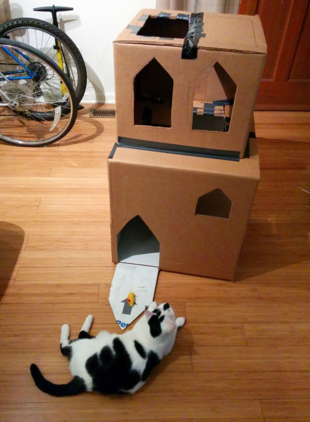 thc0hsn - why don't we build cardboard castle to our cats? this is how to do it.