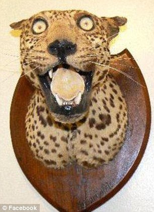 tax1 - taxidermy animals gone wrong!