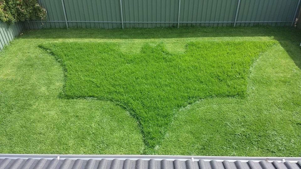 bosses wife asked him mow lawn what she got