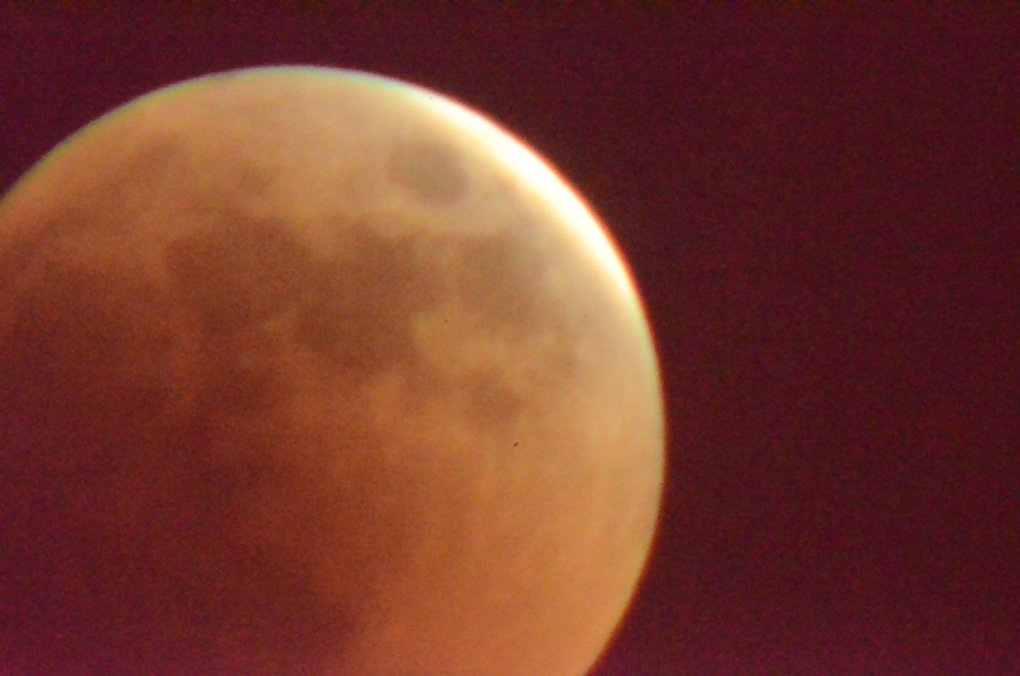 night blood red moon