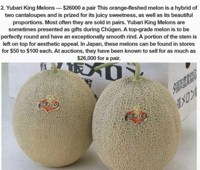 priciest king melons
