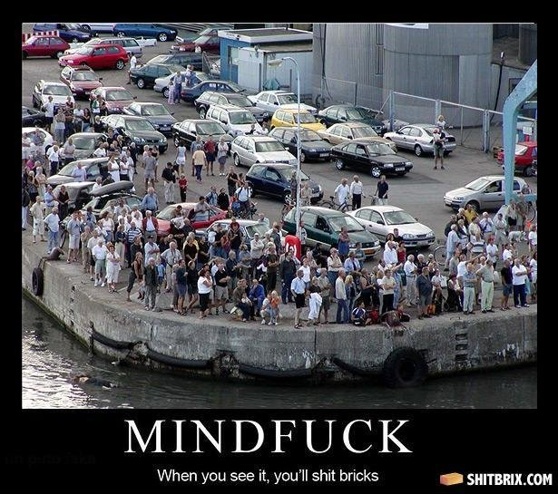 the waterfront 27183 - mindf**k brix will be shat