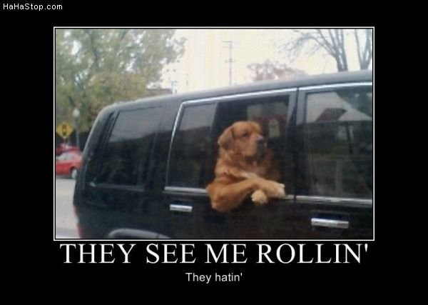 they see rollin