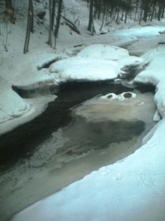 thisnowy creek looks like cookie monster