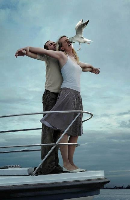 titanic - titanic and a bird!
