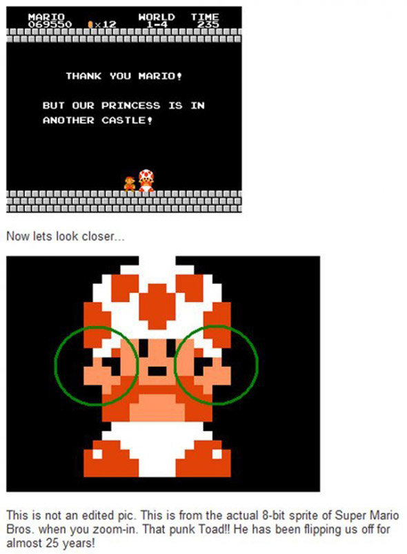 toad asshole