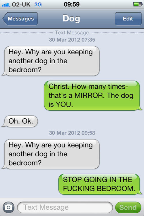 tumblr m218myft9y1rt9zy5o1 500 - texts from dog.