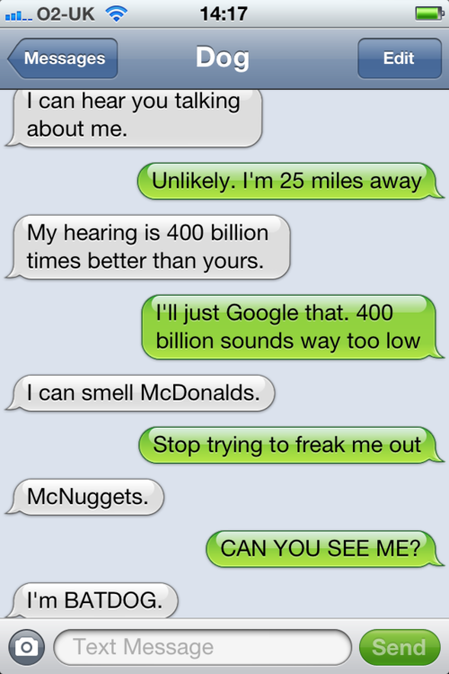 tumblr m2429wohxk1rt9zy5o1 500 - texts from dog.