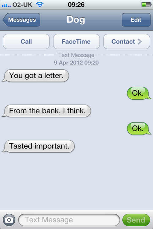 tumblr m27e5jjlud1rt9zy5o1 500 - texts from dog.