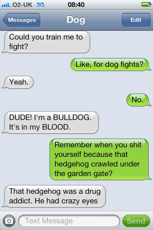 tumblr m296prepfu1rt9zy5o1 500 - texts from dog.